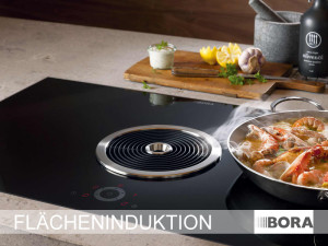 bora basic bfiu bora basic herdplatte mit dunstabzug ekitchen kochfeld bfiu bora basic mit fl. Black Bedroom Furniture Sets. Home Design Ideas